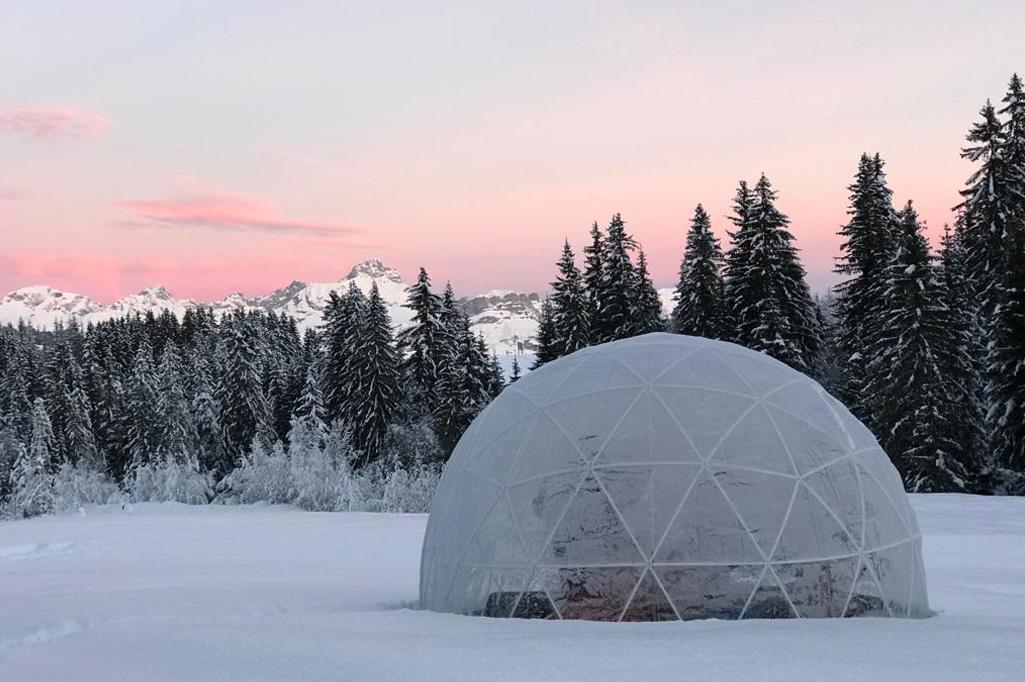 Location garden igloo